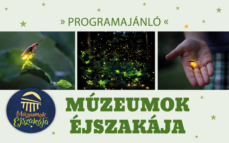 Múzeumok Éjszakája a soproni parkerdőben