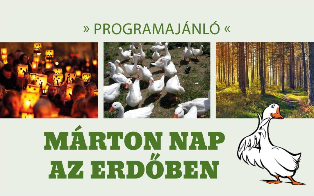 Meghívó Márton napi programra