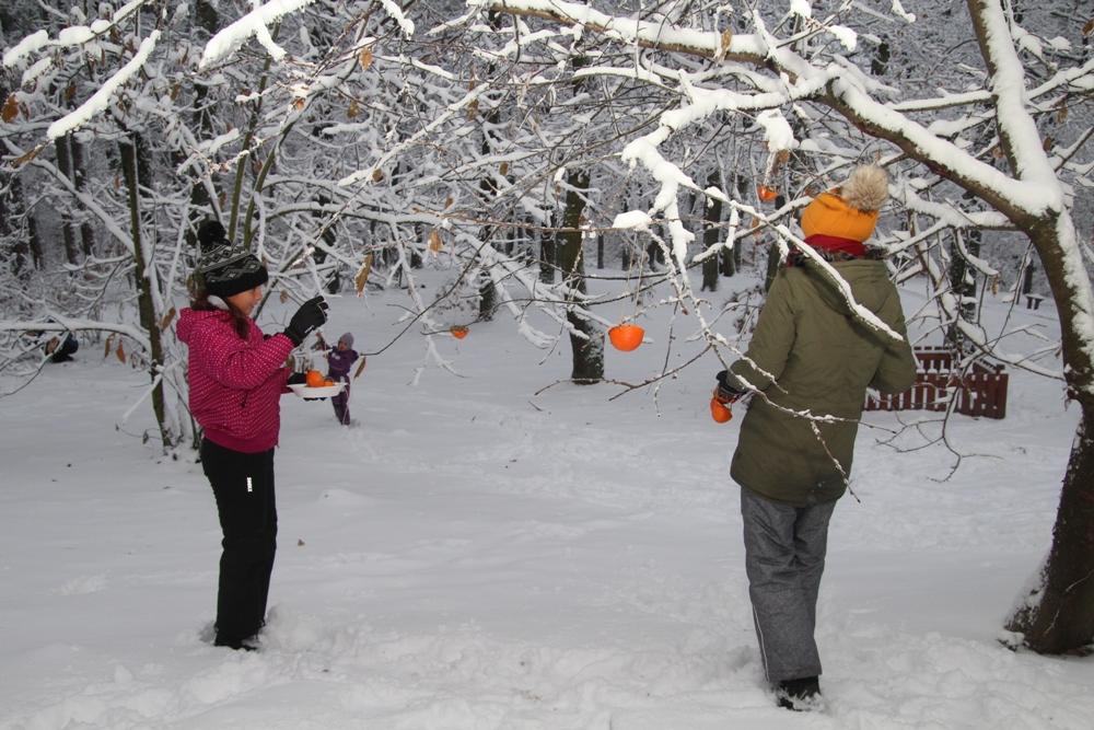 """Madarak Karácsonyfája és a """"Mesék az őszi erdőből"""" díjátadó"""