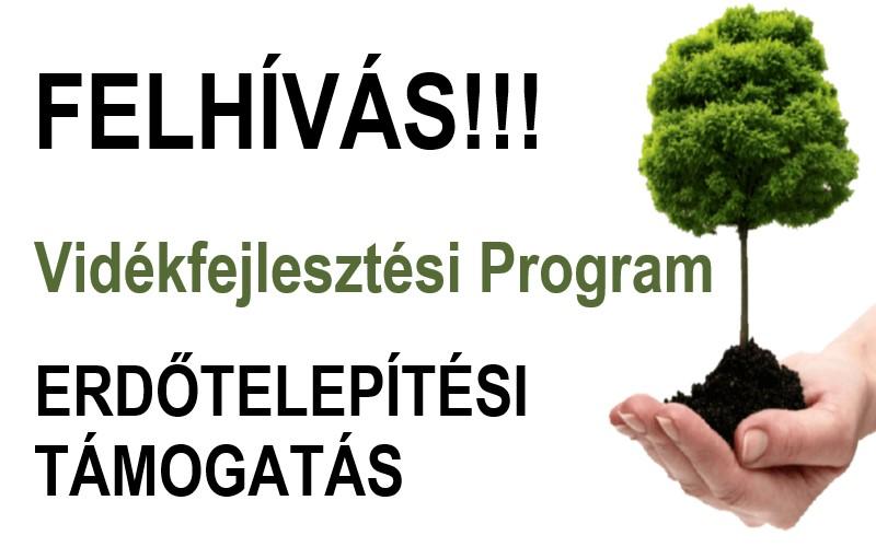 Erdőtelepítési támogatás