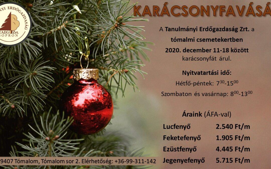 Karácsonyfavásár