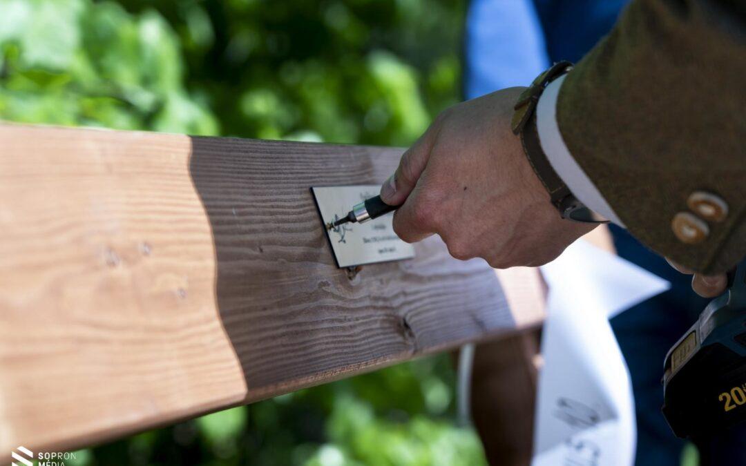 Emlékpadot avattak és csemetét ültettek a Soproni Parkerdőben